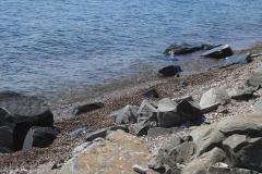 На берегу - Отдых в Листвянке